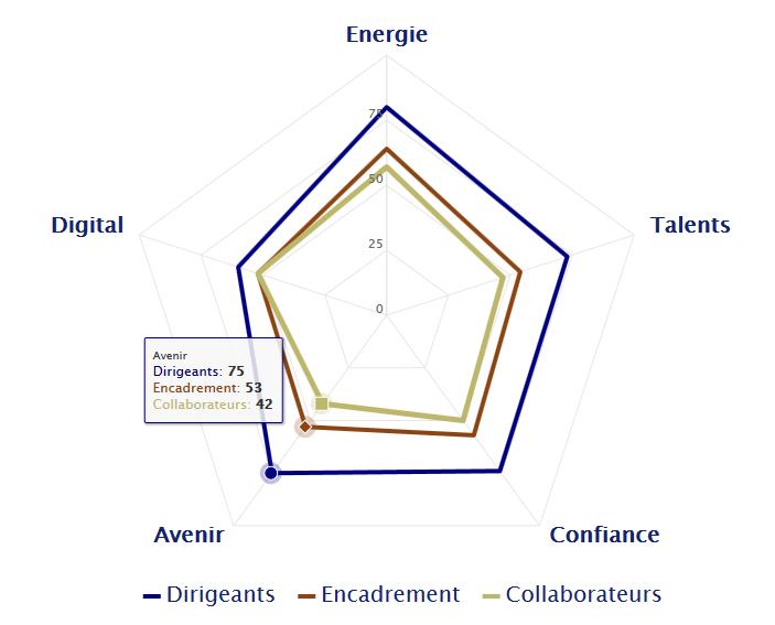 des différences de perception importantes dans les réponses au Diagnostic Management et Digital